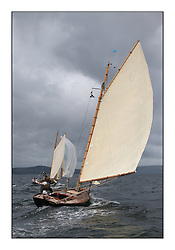 The final day of racing of the Fife Regatta on the King's Course North of Great Cumbrae<br /> Tringa, G&H Scharbaum, GER, Gaff Sloop, Wm Fife 3rd, 2010<br /> <br /> * The William Fife designed Yachts return to the birthplace of these historic yachts, the Scotland's pre-eminent yacht designer and builder for the 4th Fife Regatta on the Clyde 28th June–5th July 2013<br /> <br /> More information is available on the website: www.fiferegatta.com