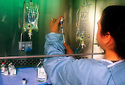 Hospitasl pharmacy tech prepares drug mixtures under a sterile hood.