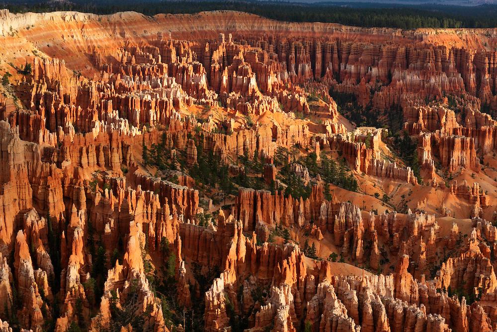 Detalles del Bryce Canyon, Utah (Estados Unidos)