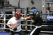 Boxen: 1. Bundesliga, Hamburg Giants, Hamburg, 13.02.2017<br /> Pressetraining zur Kooperation mit dem Hamburger Profi-Boxstall EC Boxing:<br /> Ammar Abbas Abduljabar (Giants) und Toni Kraft beim Sparring<br /> © Torsten Helmke
