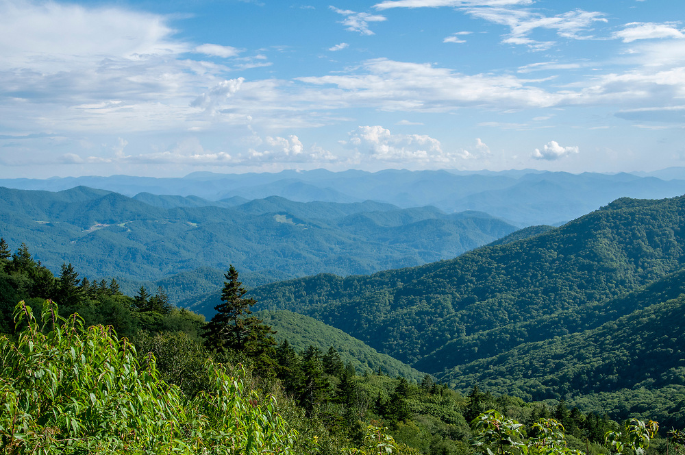 Yellow Face Overlook on the Blue Ridge Parkway in STATE on Thursday, August 13, 2020. Copyright 2020 Jason Barnette