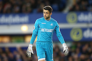 Swansea City Goalkeeper Lukasz Fabianski looks on dejected. Premier league match, Everton v Swansea city at Goodison Park in Liverpool, Merseyside on Saturday 19th November 2016.<br /> pic by Chris Stading, Andrew Orchard sports photography.