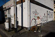 A local woman walks her dog passing a closed garage premises in the City of Galway, Ireland.
