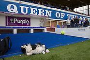 2015 Queen of the South v Stranraer