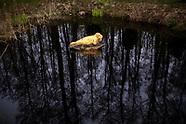 Augustów. Zimna majówka nad jeziorami - 1.05.2021