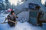 Nenets reindeer herdsmen's winter camp, Kánin Peninsula, Russia, Arctic