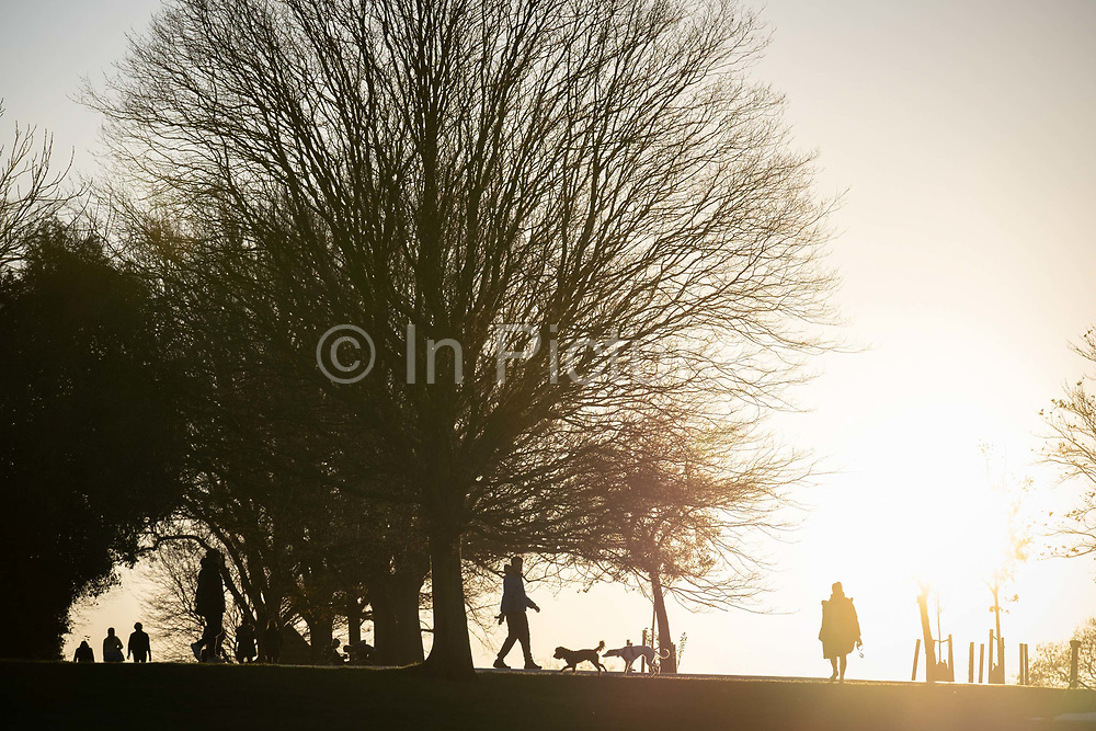 South Londoners out for a late-afternoon walk with their pet dogs, enjoying the last sunlight during the second lockdown of the Cornavirus pandemic, in Brockwell Park, on 19th November 2020, in Lambeth, London, England.