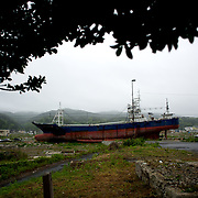 May 29, 2013 - Kesenuma, Japan: A large vessel, washed away by the 2011 tsunami, is seen grounded in what used to be a residential neighbourhood in central Kesennuma, northeastern Japan. (Paulo Nunes dos Santos)