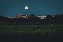 THEMENBILD - der Vollmond steht über einer Siedlung im Weinanbaugebiet, aufgenommen am 04. Juli 2020 in Novigrad, Kroatien // the full moon stands over a settlement in the wine growing area, in Novigrad, Croatia on 2020/07/04. EXPA Pictures © 2020, PhotoCredit: EXPA/ Stefanie Oberhauser