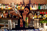 A barmaid makes cocktails in Rey de Copas cocktail bar, Palermo. In recent years, the distrcit of Palermo has become known as one of the hippest spots in Buenos Aires, with a pleathora of bars, restaurants and clubs providing a wide variety of entertainment until very late into the night.