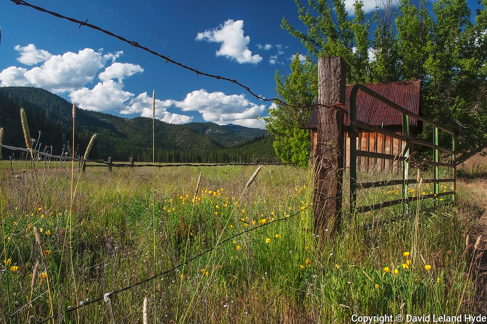 California Poppies and Kettle Rock Through Barbed Wire Fence, Genesee Valley Ranch, Spring Flowers, Green Pastures