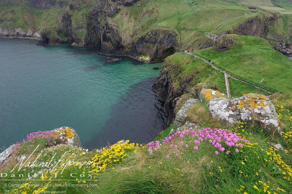 The coastline along Carrick-a-rede Rope Bridge National Trust, Ireland.