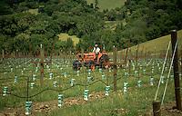 Plowing a new vinyard