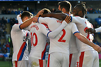 Football - 2018 / 2019 Premier League - Cardiff City vs. Crystal Palace<br /> <br /> Crystal Palace celebrate their 3rd goal, \goalscorer Andros Townsend of Crystal Palace back to camera, at Cardiff City Stadium.<br /> <br /> COLORSPORT/WINSTON BYNORTH