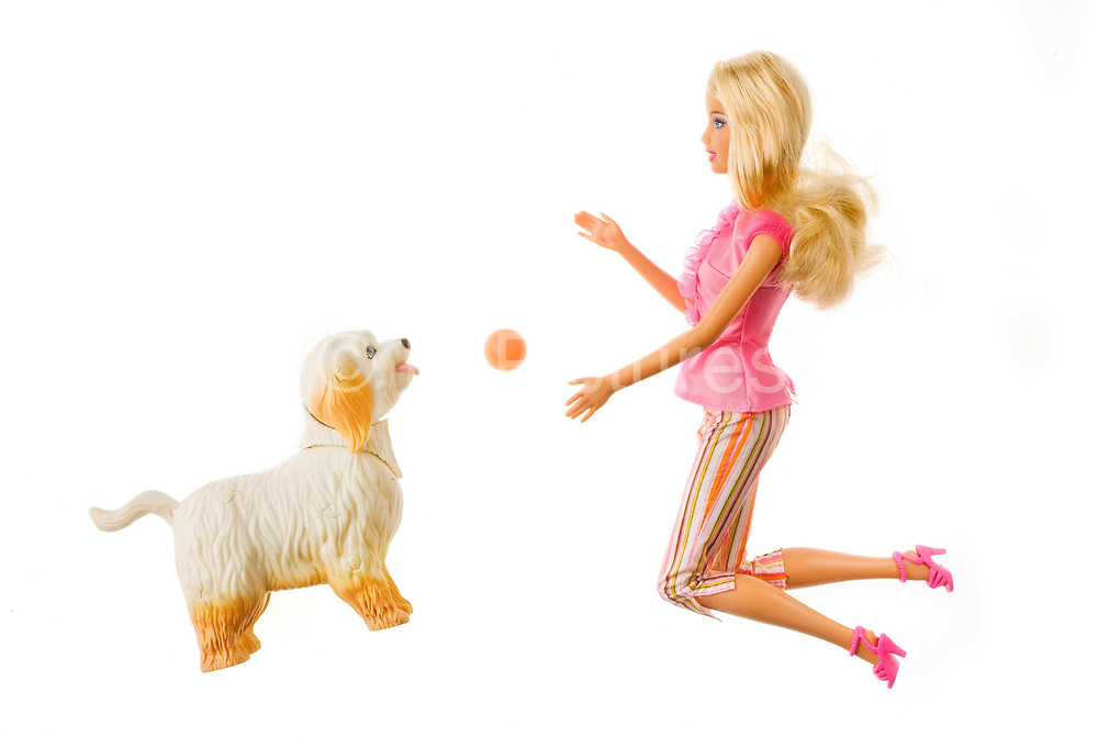 "Barbie doll 2009 playing with her dog. Written on the packaging: ""Clean up pup.<br /> Cleanliness is next Barbie-ness. Barbie can do it all!"""