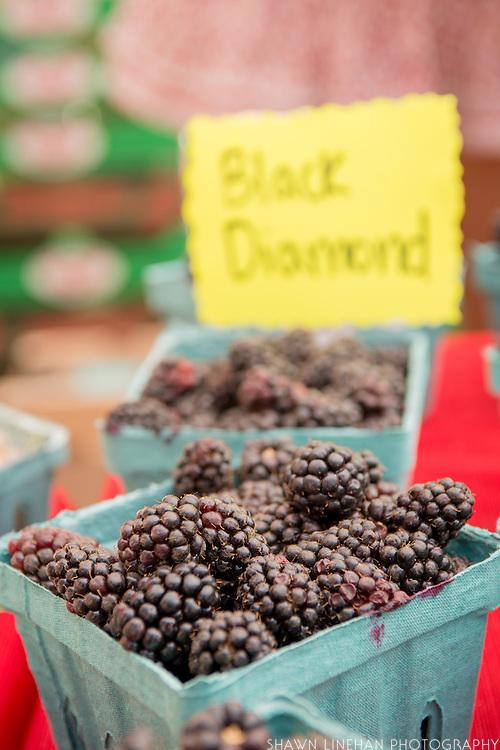 Black Diamond Blackberries