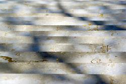 Finalista IX Concurso de Fotografía de Arquitectura <br /> Contemporánea, organizado por el Colegio Oficial de Arquitectos de Huelva.  2008<br /> Sección II: Fotografía Tradicional Fuera de la provincia de Huelva.<br /> Sombra de árboles sobre la escalera exterior de acceso a la estación de tren de Santa Justa en Sevilla.