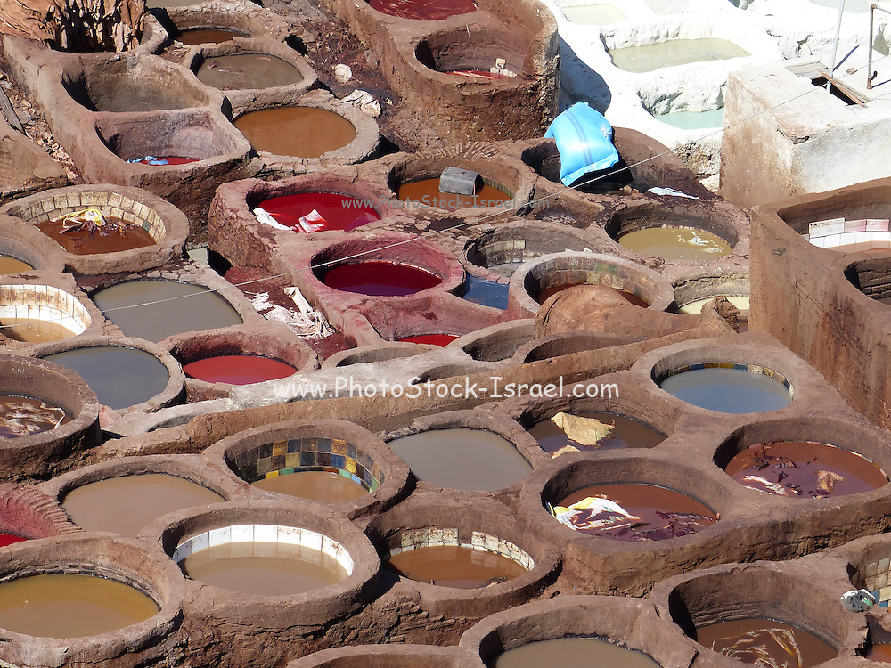 Morocco, Fes, Leather industry a leather tannery