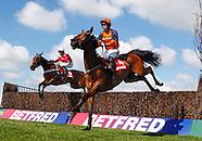 Aintree Races 120412