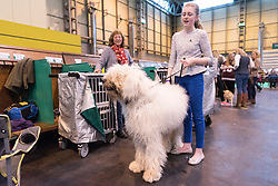 © Licensed to London News Pictures. 10/03/2016. A dog owner with her dog in the dog benches area before a judging competition. Crufts celebrates its 12th anniversary as the Worlds largest dog show. Birmingham, UK. Photo credit: Ray Tang/LNP