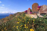 Armenie, Lac Sevan, ancien cimetière // Armenia, Sevan lake, old cemetery