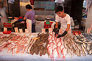 Shop selling fresh fish in Wan Chai's thronging food market on Bowrington Road in Hong Kong, China. Almost any food can be bought here, both fresh or cooked, on this stall it was possible to buy some very exotic fish as food. Unlike western markets, almost anything goes in Chinese wet markets. Wan Chai is a busy Chinese shopping district totally different to nearby westernised Central.