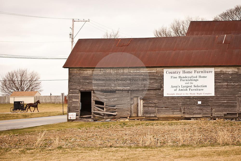 Traditional Amish horse buggy passes an Amish barn Weaverland, PA