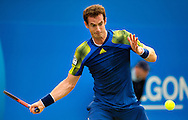 Britain's Andy Murray returns to Croatia's Martin Cilic, during their final match for the Aegon Championships at the Queen's Club in London, Britain, 15 June 2013. EPA/BOGDAN MARAN