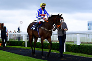 Love Not Money ridden by George Rooke and trained by John Bridger ridden in the Bath.co.uk Classified Stakes - Mandatory by-line: Ryan Hiscott/JMP - 24/08/20 - HORSE RACING - Bath Racecourse - Bath, England - Bath Races