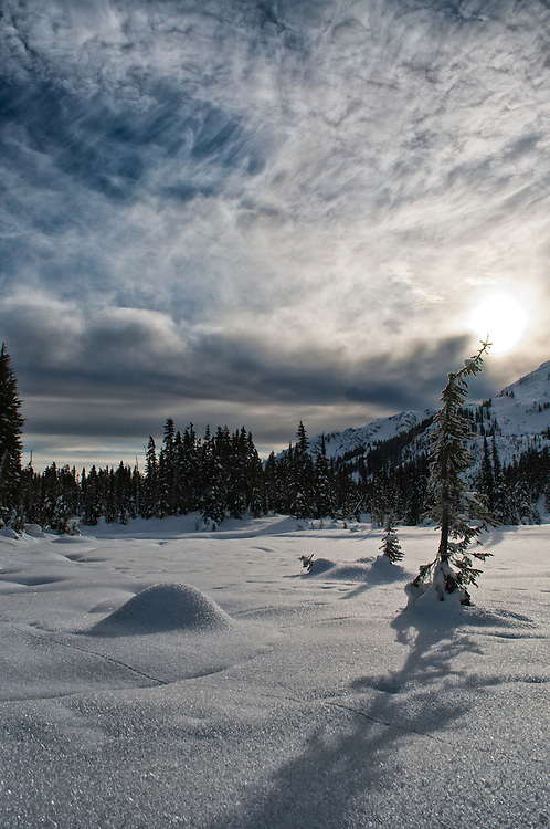 A photograph of a sunny, snowy landscape in the mountains, Callaghan Provincial Park, British Columbia.