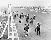 30/06/1962 <br /> 06/30/1962<br /> 30 June 1962<br /> Irish Sweeps Derby at the Curragh Racecourse, Co. Kildare. The finish of the Derby.