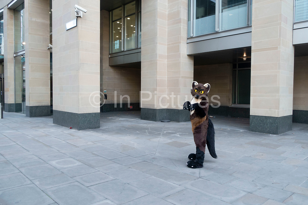 Furry gathering in London, United Kingdom. The furries fandom is a subculture interested in fictional anthropomorphic animal characters with human personalities and characteristics. Examples of anthropomorphic attributes include exhibiting human intelligence and facial expressions, the ability to speak, walk on two legs, and wear clothes. Furry fandom is also used to refer to the community of people who gather on the Internet and at furry conventions.