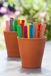 Rainbow coloured plant labels in terracotta pot
