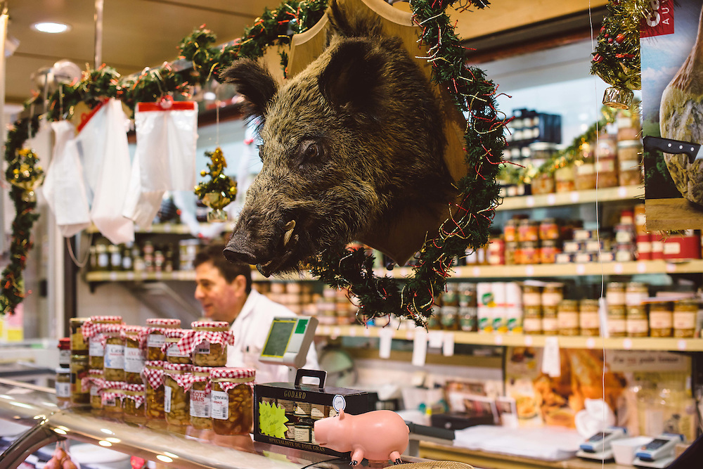 Boar Head at a butcher in Versailles