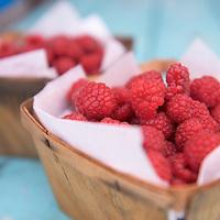 Baskets of delicious raspberries ready for eating at the Red Velvet Lounge in Cygnet, Tasmania, Australia.