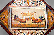 Roman Mosaic portrait of a Cockerall Fight from Pompei Archaeological Site. Naples Archaeological Museum .<br /> <br /> If you prefer to buy from our ALAMY PHOTO LIBRARY  Collection visit : https://www.alamy.com/portfolio/paul-williams-funkystock/roman-mosaic.html - Type -   Naples    - into the LOWER SEARCH WITHIN GALLERY box. Refine search by adding background colour, place, museum etc<br /> <br /> Visit our ROMAN MOSAIC PHOTO COLLECTIONS for more photos to download  as wall art prints https://funkystock.photoshelter.com/gallery-collection/Roman-Mosaics-Art-Pictures-Images/C0000LcfNel7FpLI