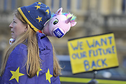 January 30, 2018 - London, UK - LONDON, UK.  A campaigner stands outside the Houses of Parliament to protest against Brexit carrying a toy unicorn bearing with the message ''We Were Conned''.  It has been reported that a leaked document entitled ''EU Exit Analysis - Cross Whitehall Briefing'', drawn up by the Department for Exiting the EU, concludes that Britain will be worse off under any Brexit scenario. (Credit Image: © Stephen Chung/London News Pictures via ZUMA Wire)