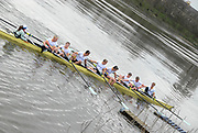 Putney, London,   Cambridge Goldie crew, preparing to land, at MAA, and Quintin Boat Clubs, Chiswick, after their win over Oxford Isis,156th University Boat Race, River Thames, between Putney and Chiswick, on the Championship Course.  Saturday  03/04/2010 [Mandatory Credit Karon Phillips/Intersport Images]<br /> Cambridge Goldie Crew, Bow  - Wanne KROMDIJK, George LAMB, <br /> Mike THORP, Matt WHALEY, Hardy CUBASCH, Joel JENINGS, Moritz SCHRAMM, Stroke -  Geoff ROTH and Cox - Elizabeth BOX