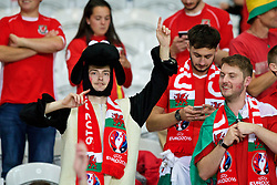 LILLE, FRANCE - Friday, July 1, 2016: A Wales supporter dressed as a sheep celebrates the 3-1 victory against Belgium at full time after the UEFA Euro 2016 Championship Quarter-Final match at the Stade Pierre Mauroy. (Pic by Paul Greenwood/Propaganda)