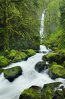 Elowah Falls and McCord Creek, Columbia River Gorge National Scenic Area, Oregon