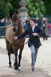 Whittington Francis, (GBR), Hasty Imp<br /> First Horse Inspection - Mitsubishi Motors Badminton Horse Trials <br /> Badminton 2015