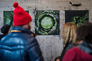 The London Ultra - an Open Submission Art Show organised by FPS (Free Painters and Sculpters) at The Bargehouse, The OXo Tower. There were at least 60 artists exhibiting including some amazing installations, performances. © Guy Bell, guy@gbphotos.com, 07771786236