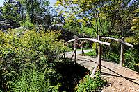 Norway, Sandnes. Wooden bridge in Rogaland Arboret.