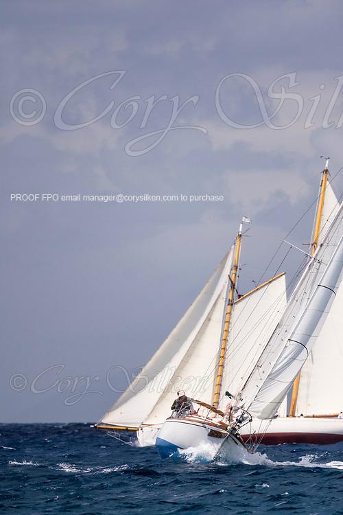 sailing in the Antigua Classic Yacht Regatta, Windward Race.