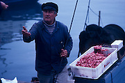 Norwegian fisherman selling fresh shrimp in downtown Oslo, Norway..Media Usage:.Subject photograph(s) are copyrighted Edward McCain. All rights are reserved except those specifically granted by McCain Photography in writing...McCain Photography.211 S 4th Avenue.Tucson, AZ 85701-2103.(520) 623-1998.mobile: (520) 990-0999.fax: (520) 623-1190.http://www.mccainphoto.com.edward@mccainphoto.com