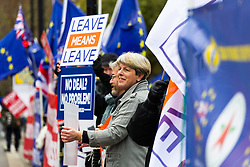 Leave and Remain campaigners line the street outside Parliament. London, January 07 2019.