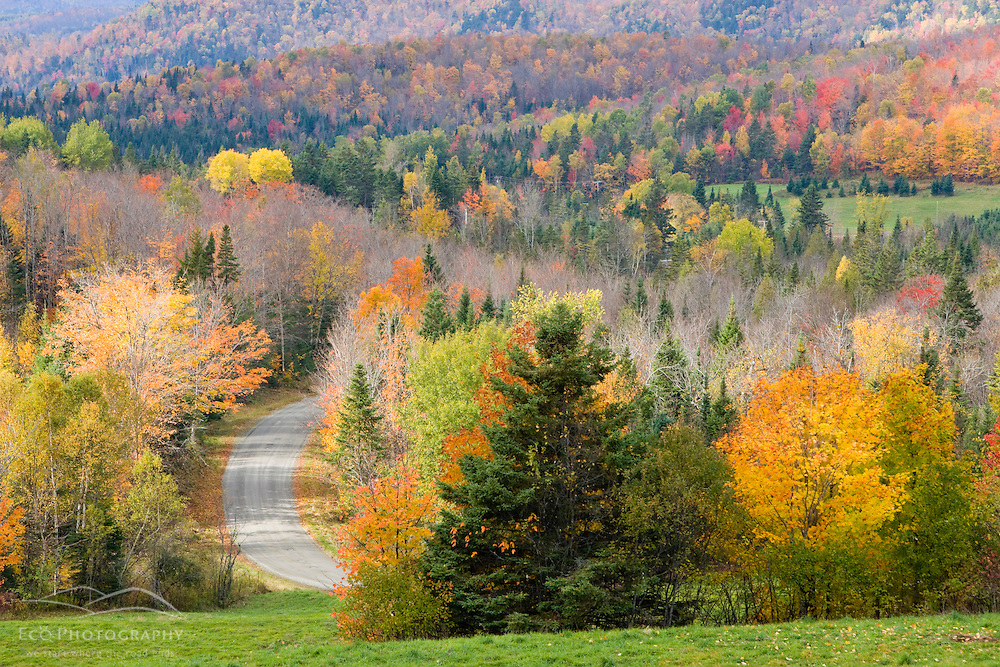 View from NH Route 145 in Stewartstown, New Hampshire.