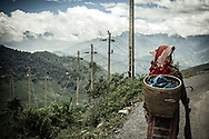 Red Dao woman walks along the narrow road leaving Thanh Kim Commune, Sapa District, Lao Cai Province, Vietnam, Southeast Asia