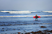 Longboard Surfer In The Pacific Ocean Orange County