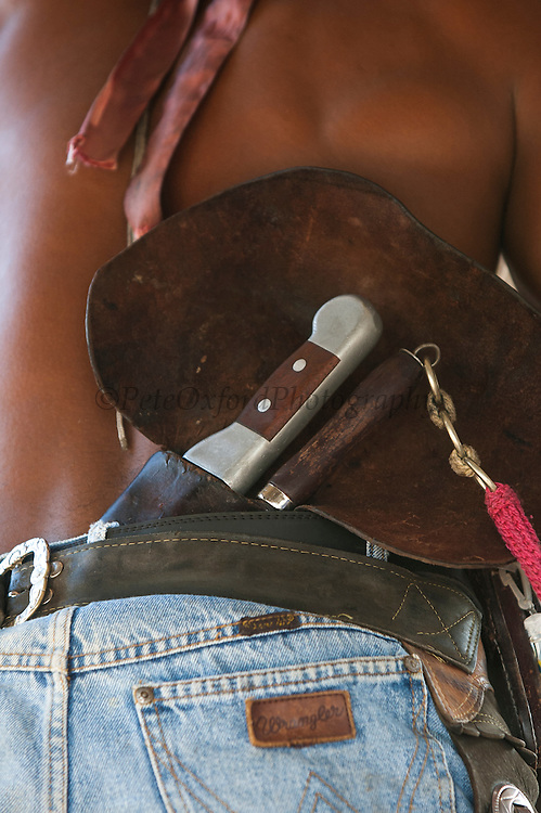 Pantanal cowboy 'Boiadeiro' in the Central Pantanal. Wearing typical knife from the region with it's huge leather back protectors.<br /> Pantanal. Largest contiguous wetland system in the world. Mato Grosso do Sul Province. BRAZIL.  South America